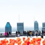 Les points de vue de Montréal